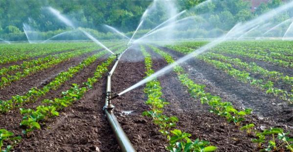 Reutilización-del-agua-en-la-agricultura-900x468