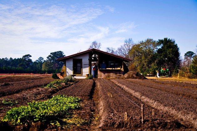 agricultura_familiar_0