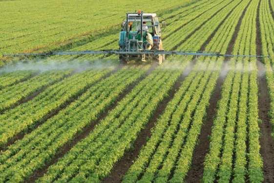 evolucao-da-agricultura