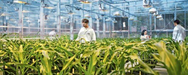 plant-science-2-770x310